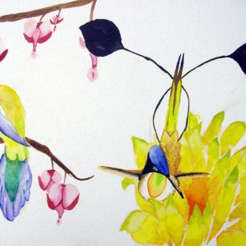 Oiseaux exotiques Aquarelle